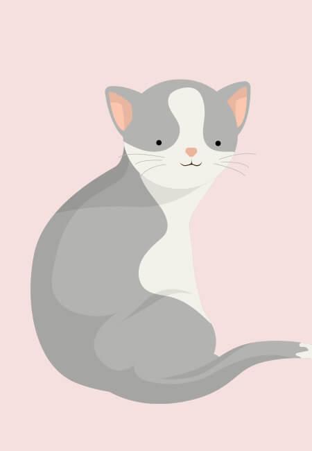 Davids kat fra hans personlige navneplakat fra Bogstavzoo